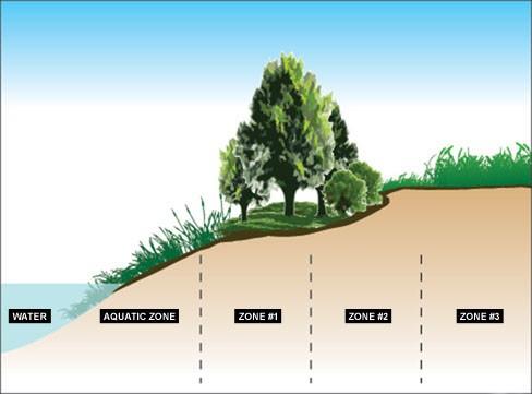 Riparian buffer zones