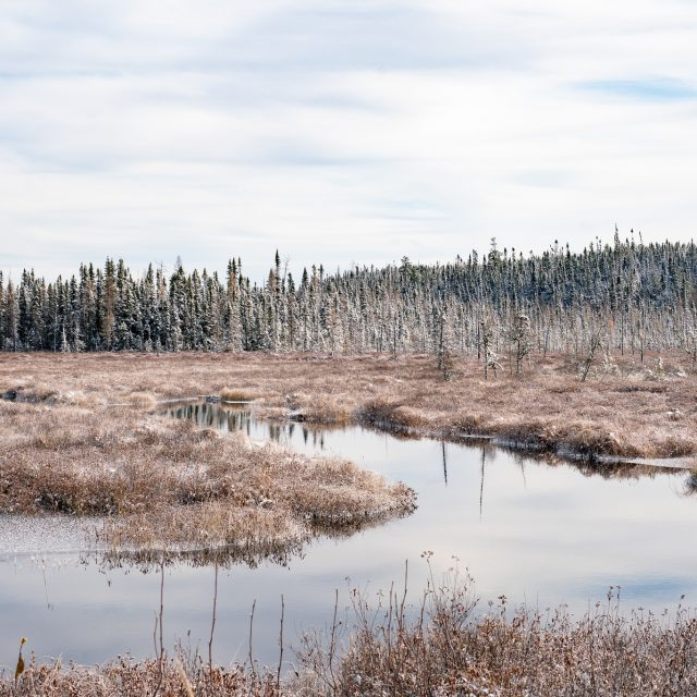 With clearance from the pandemic committee after postponing all visits, we revisited Long Point First Nation in Winneway, Quebec to reconnect and to scope our two community-suggested sites for restoration work.